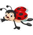 cartoon ladybug flying vector image vector image