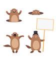 groundhog set 3 flat vector image vector image