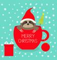 merry christmas fir tree goftbox sloth sitting vector image