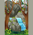 nature water in forest vector image