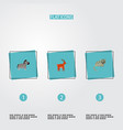 set of alive icons flat style symbols with cat vector image