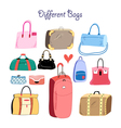 set of different bags vector image vector image