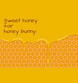 sweet honey for honey bunny vector image vector image