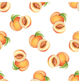 Watercolor pattern of fruit peach vector image vector image