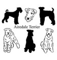 airedale terrier set collection pedigree dogs vector image vector image