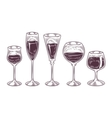 collection wine glasses vector image
