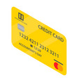 international credit card icon isometric style vector image vector image