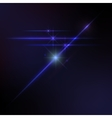 Lens flares star lights glow vector image
