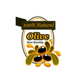 olive oil product icon for food packaging label vector image