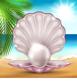 pearl on sand vector image vector image