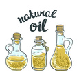 set bottles with linseed and olive oil isolated vector image