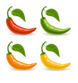 set with multicolor peppers isolated on white vector image vector image