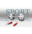 sport equipment weight and rope gray vector image