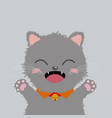hand drawn cute cat design on gray background vector image