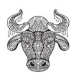 coloring bull vector image