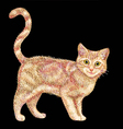 Cute and colorful cat drawing vector image vector image