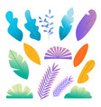 doodle colorful leaves and flowers flat set vector image