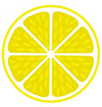 fresh juicy lime- lemon cut sliced section vector image vector image