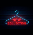 new collection neon sign vector image