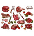 sketch icons of fresh butchery meat vector image vector image