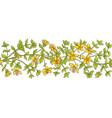 tutsan branch pattern vector image vector image