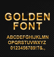 golden glossy font on black vector image