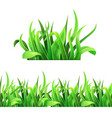 green grass horizontal seamless vector image vector image