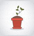 plant inside pot of gardening design vector image vector image