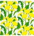 seamless floral pattern with dandelions vector image vector image