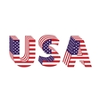 USA letters from flag vector image vector image