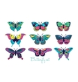 Set of butterflies decorative silhouettes vector image