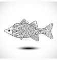 fish isolated on a white background vector image vector image