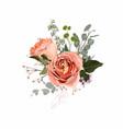 floral bouquet design garden creamy roses vector image