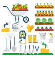 garden tools machinery for harvesting and farmers vector image vector image