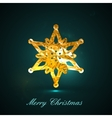 Holiday of a golden metallic foil snowflake vector image