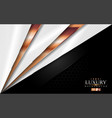 luxury white and black modern background vector image vector image