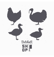 Set of farm birds silhouettes Chicken turkey vector image vector image