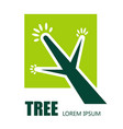 tree plant isolated icon ecology and environment vector image