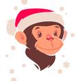 monkey new year vector image