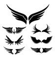 wings set design element vector image
