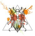 entangle stylized may bug scarab bettle vector image