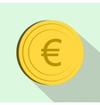 Euro icon flat style vector image vector image