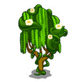 exotic tree with creeping leaves and flowers vector image vector image