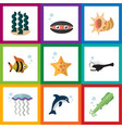 flat icon sea set of scallop seafood fish and vector image vector image