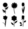 flowers black silhouettes vector image vector image