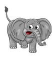 funny cartoon elephant on white background vector image