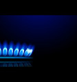 gas2 with flame vector image vector image