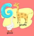 letter g from children s alphabet