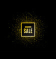 summer sale special offer price sign vector image