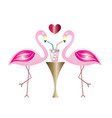 two flamingos in love drinking cocktail vector image